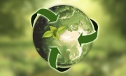 Sustainability: 3 Global Trends in 2020 — Mickey Z.